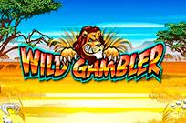 Видеослот Дикий Игрок представлен бесплатно в онлайн-казино GMSlots